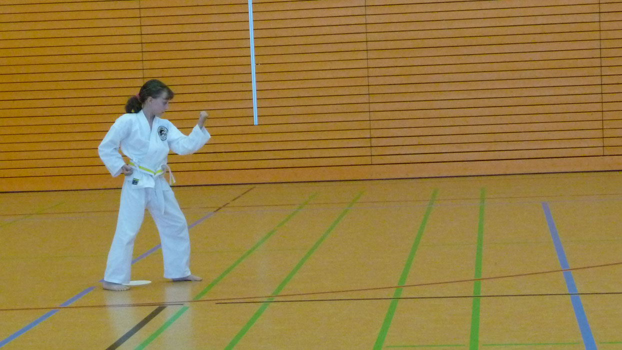 kempo-karate-cup-2013-014