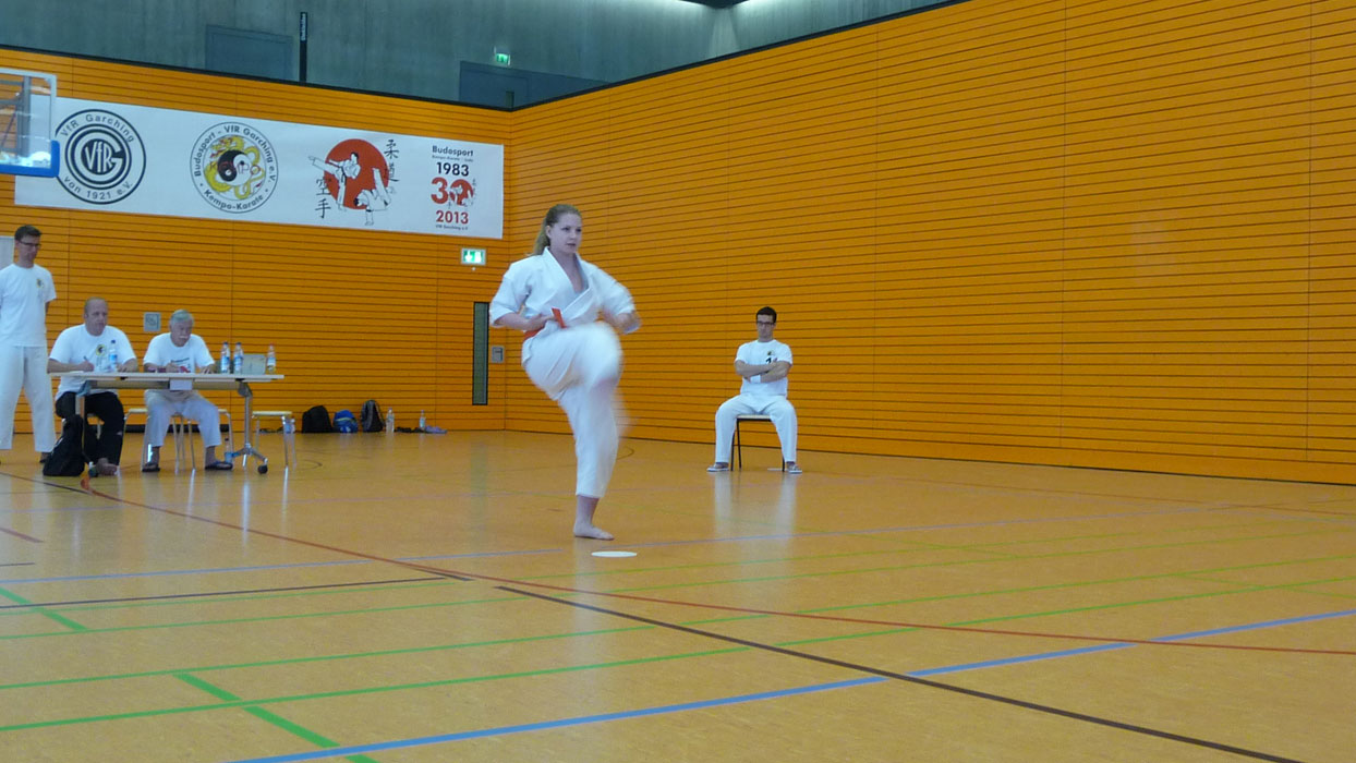 kempo-karate-cup-2013-027